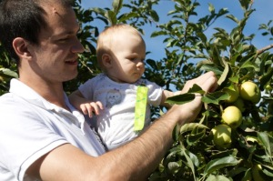 apples with papa